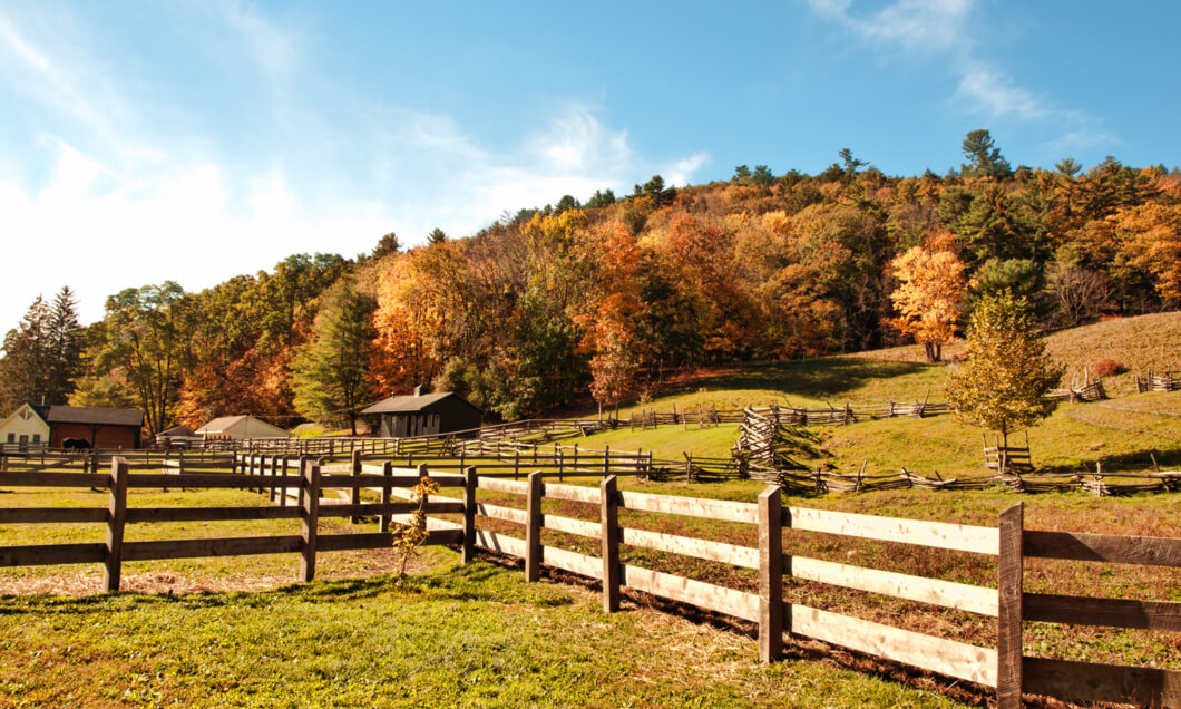 Agricultural wooden fence